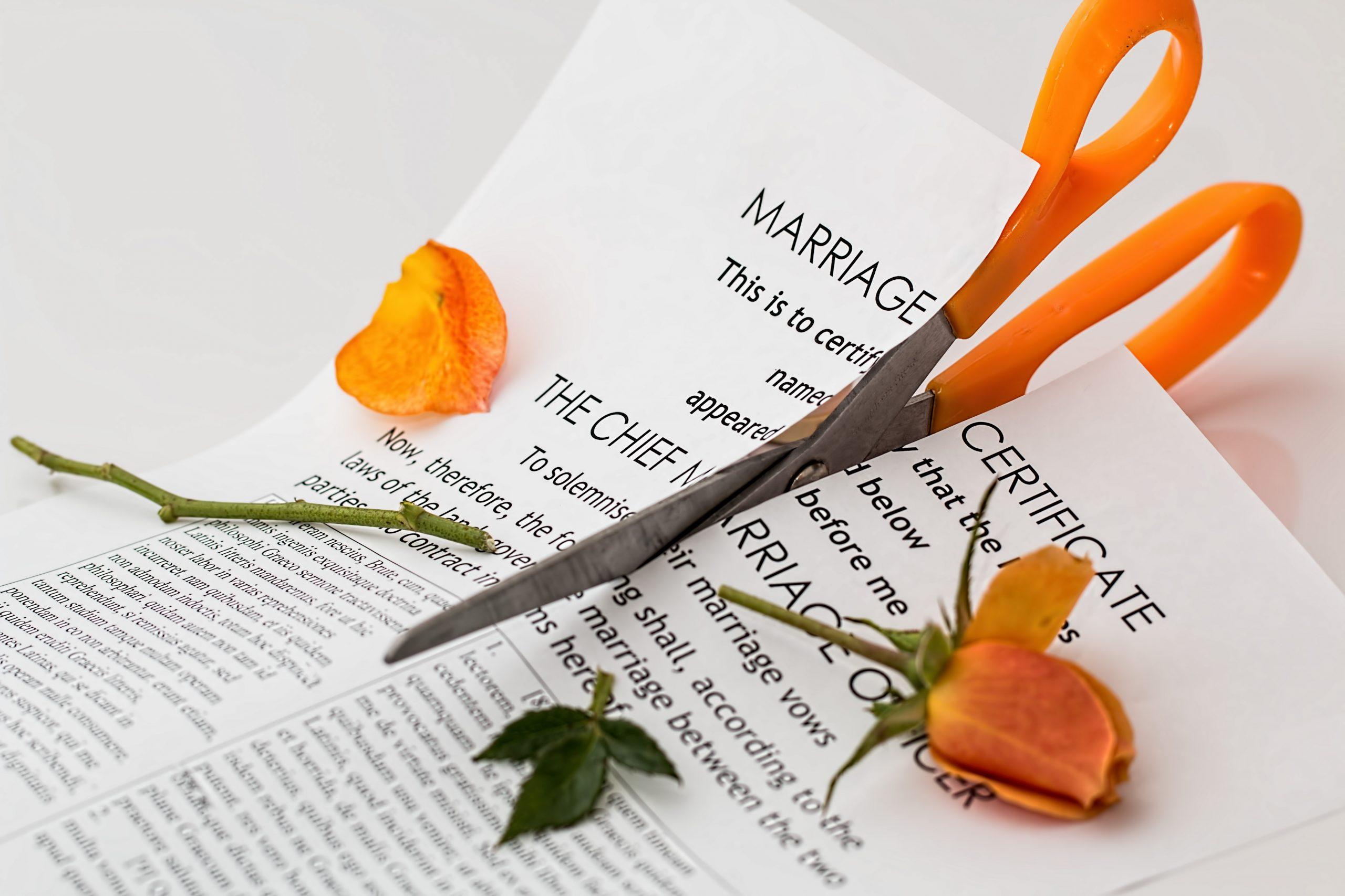 Delfino Madden | family law