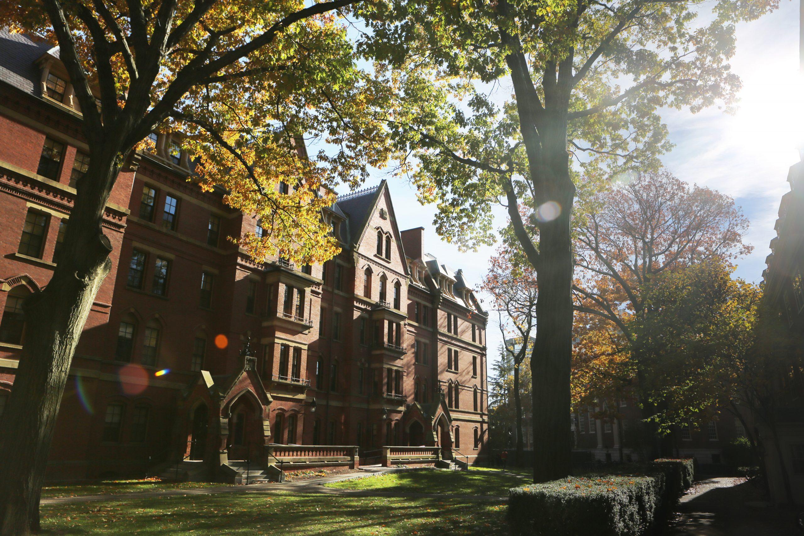Delfino Madden   higher education