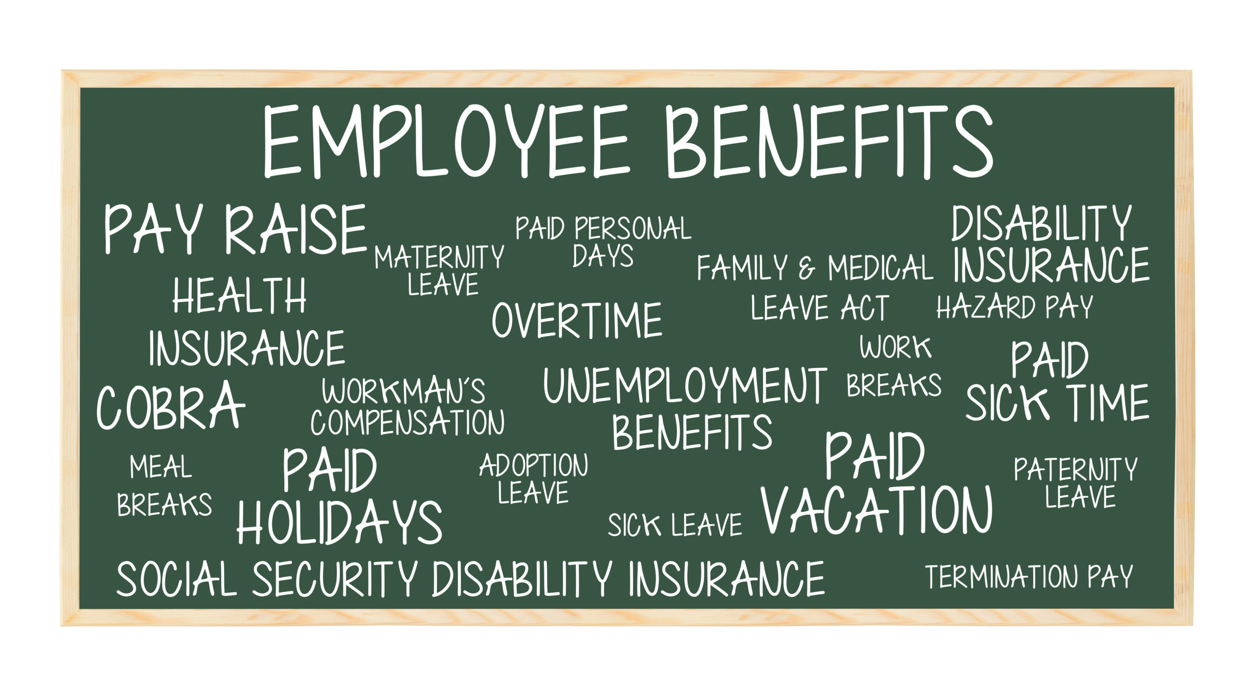 Delfino Madden | employment law employment benefits